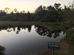 Voyage Pantanal au Brésil